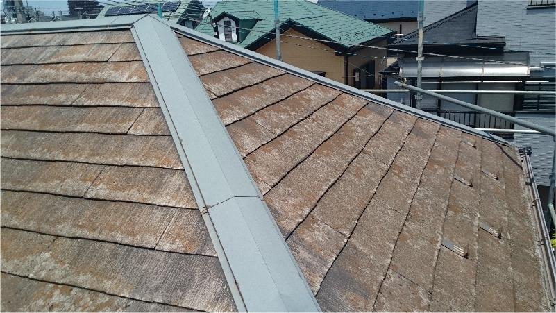屋根板金のコケが発生している