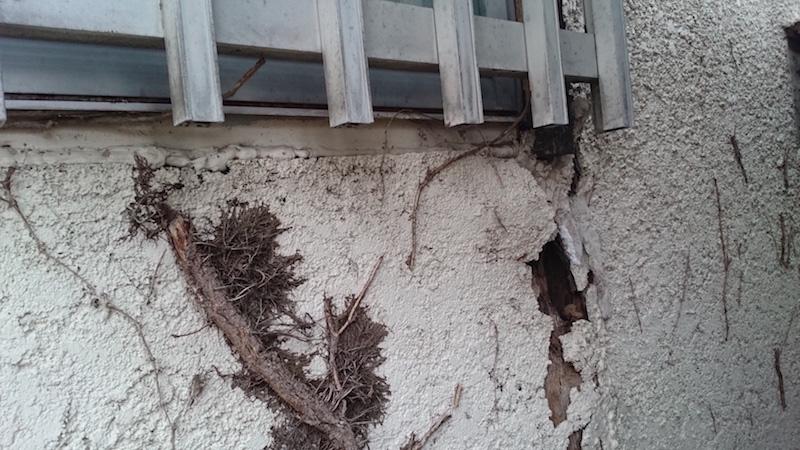 外壁が剥がれたモルタル外壁