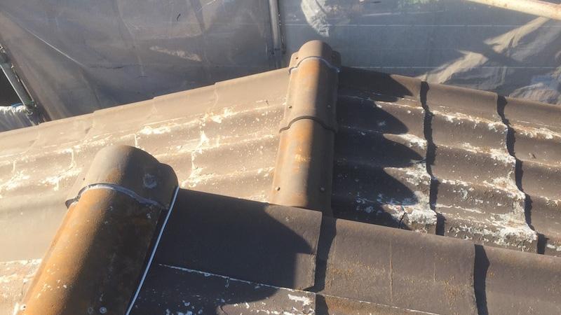 苔とカビが生えた波型スレート