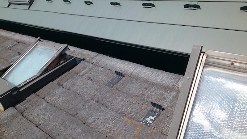 コケとカビの生えたスレート屋根