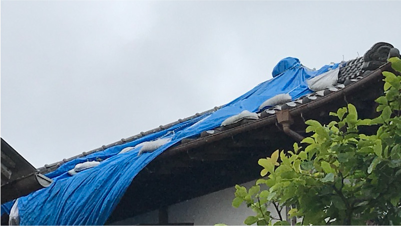 市原市の倉庫の屋根葺き替え工事の施工前の様子
